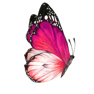 butterflyside_72_01a